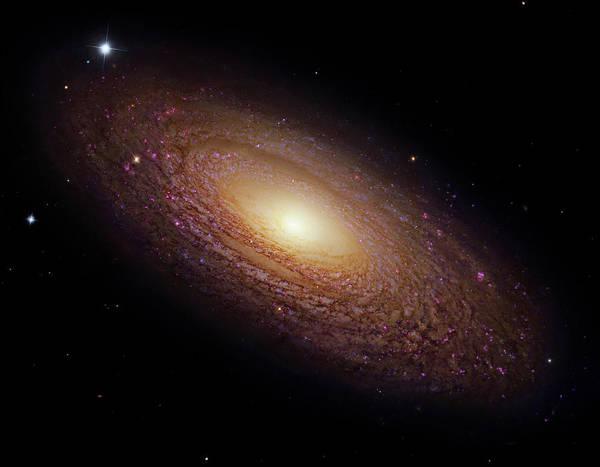 Ursa Major Photograph - Spiral Galaxy Ngc 2841 by Naoj/nasa/esa/stsci/robert Gendler/science Photo Library