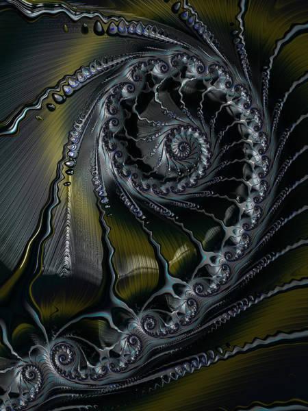 Digital Art - Spiral In Pewter by Amanda Moore