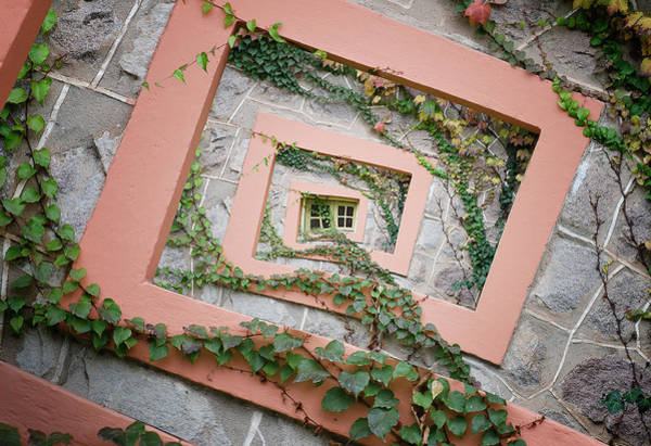 Vines Wall Art - Photograph - Spiral Window by Chechi Peinado