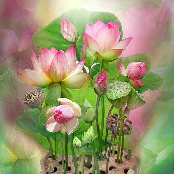 Pod Mixed Media - Spirit Of The Lotus - Sq by Carol Cavalaris