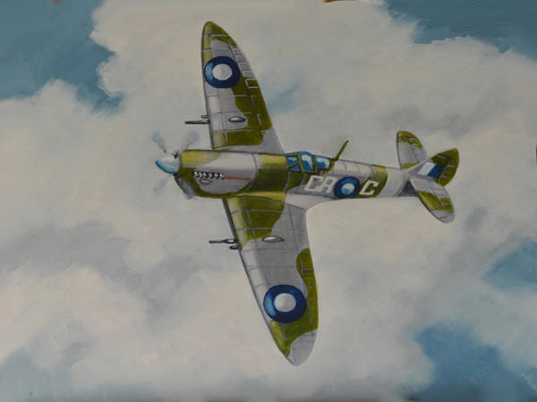 Painting - Spitfire Mk.viii by Murray McLeod