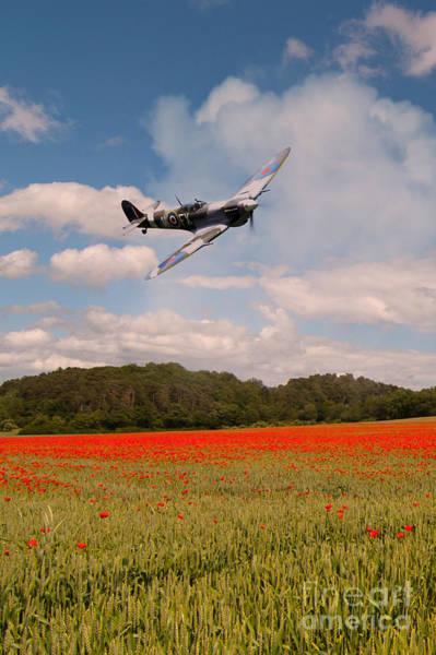 Tribute Digital Art - Spitfire Poppies  by J Biggadike