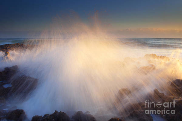 Coral Photograph - Splash by Mike  Dawson