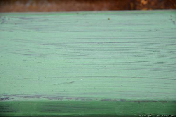 Photograph - Splash Of Green by Teresa Blanton
