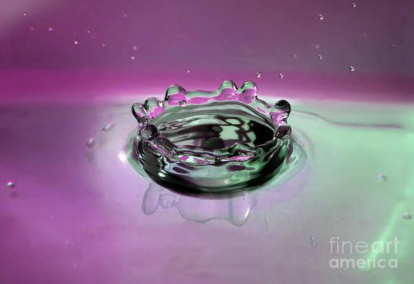 Splash Of Purple Art Print