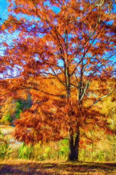 Painting - Landscape - Tree - Splendor Of Autumn by Barry Jones