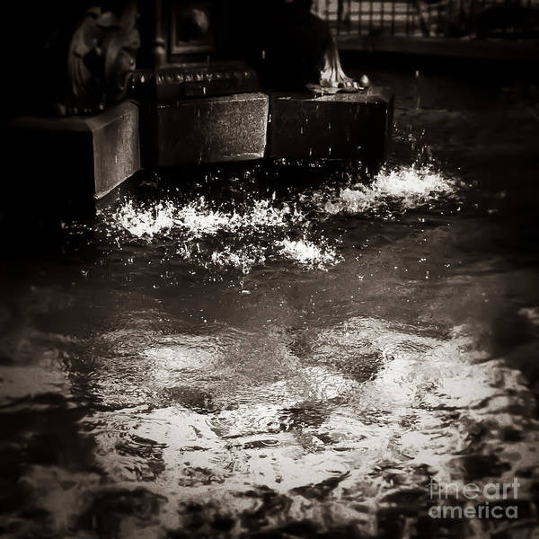 Photograph - Splish Splash Memphis Tennessee by T Lowry Wilson