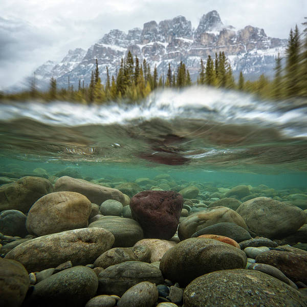 Underwater Scene Photograph - Split Frame View Of Creek Bed And by Ascent Xmedia