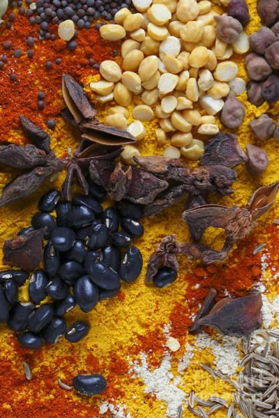 Photograph - Split Peas Anicea And Soy Beans by Paul Cowan