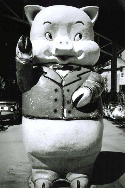 Photograph - Spokane Pig by Tarey Potter