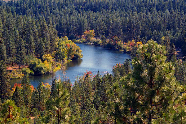 Photograph - Spokane River 2014 #1 by Ben Upham III