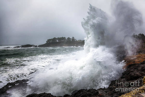 Photograph - Spouting Horns by Lynn Palmer