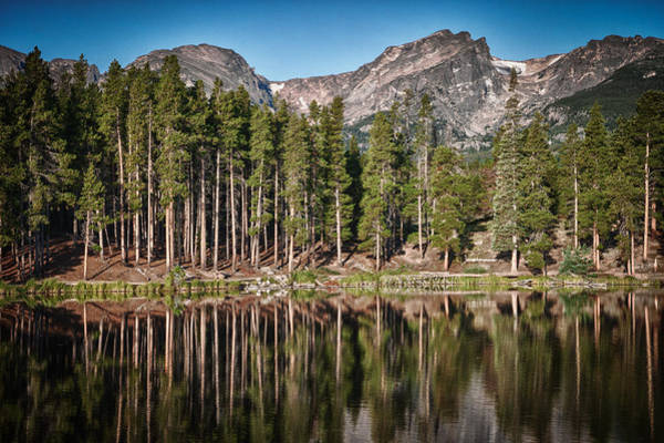 Photograph - Sprague Lake by James Woody