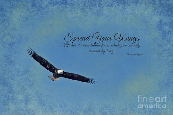 Photograph - Spread Your Wings by Pam  Holdsworth