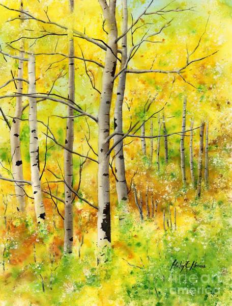 Wall Art - Painting - Spring Aspens by Hailey E Herrera