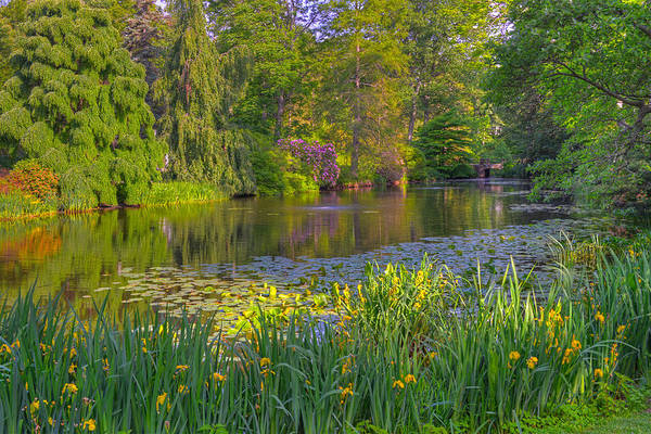 Photograph - Spring Morning At Mount Auburn Cemetery by Ken Stampfer