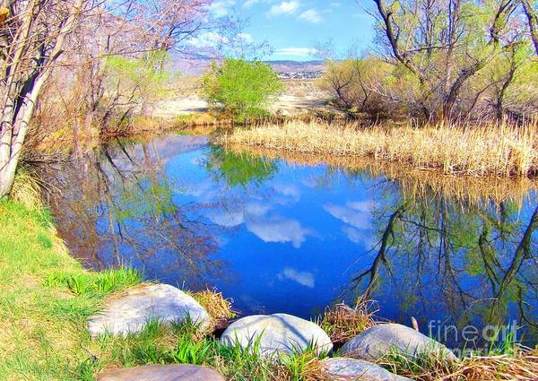 Bishop Hill Photograph - Spring At The Pond by Marilyn Diaz