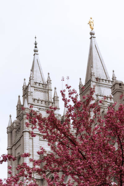 Late Wall Art - Photograph - Spring At The Temple by Chad Dutson