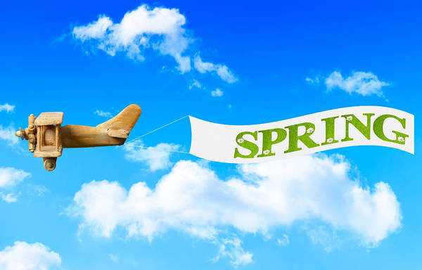 Vintage Airplane Photograph - Spring Banner by Amanda Elwell