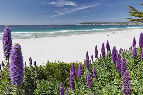 Carmel By The Sea Photograph - Spring Beach Vista Of Carmel Beach by George Oze