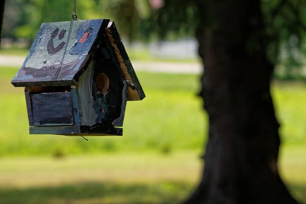 Photograph - Spring Birdhouse by Lars Lentz