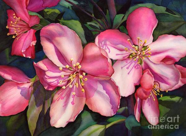 Pink Blossom Painting - Spring Blossoms by Hailey E Herrera