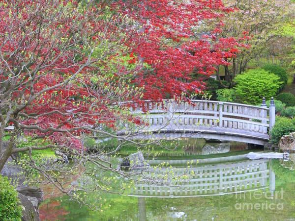 Photograph - Spring Color Over Japanese Garden Bridge by Carol Groenen