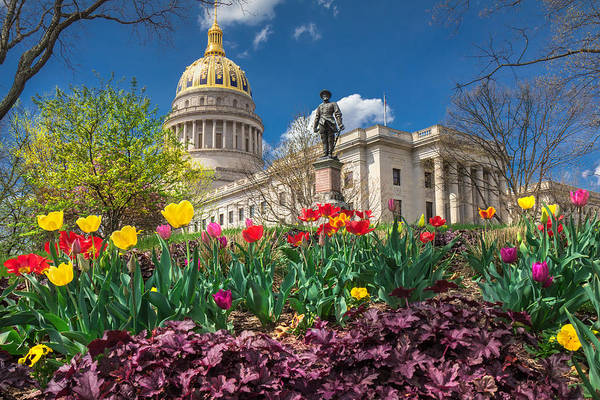 Photograph - Spring Comes To Wv Capitol by Mary Almond