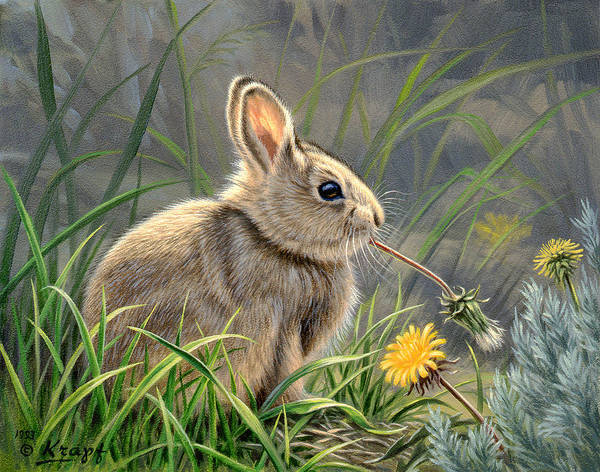 Bunny Rabbit Wall Art - Painting - Spring Cottontail by Paul Krapf