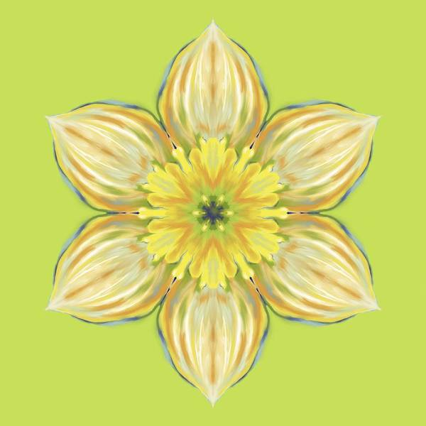Digital Art - Spring Daffodil Abstract by MM Anderson