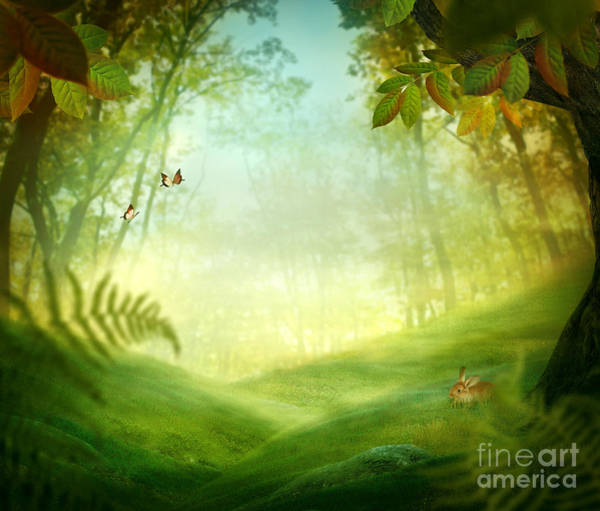 Summertime Digital Art - Spring Design - Forest Meadow by Mythja  Photography