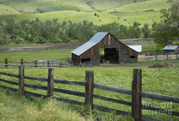 Wall Art - Photograph - Spring Farm by Idaho Scenic Images Linda Lantzy