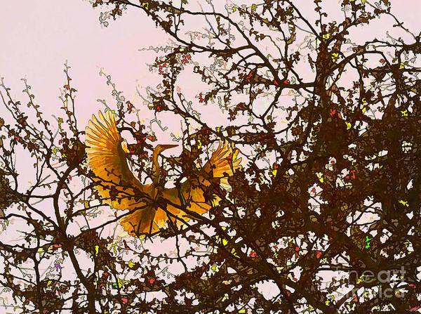 Photograph - Spring Flight by Melinda Hughes-Berland