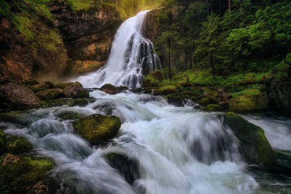 Paradise Photograph - Spring Flood by Daniel F.