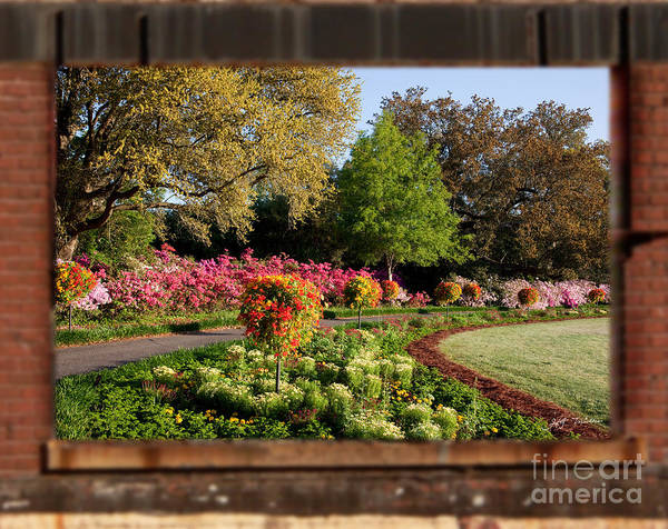 Wall Art - Photograph - Spring Flowers In A Wood Brick Frame  by Heinz G Mielke