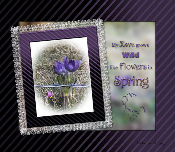 Photograph - Spring Flowers by Susan Kinney