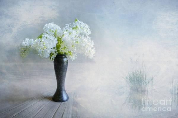 Blue Vase Photograph - Spring Flowers by Veikko Suikkanen