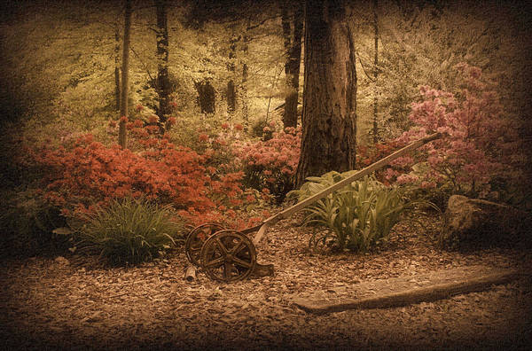 Photograph - Spring Garden by Sandy Keeton