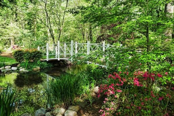 Photograph - Spring Gardens by Keith Swango