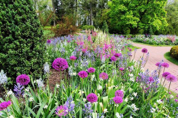 Photograph - Spring Gardens by Trina  Ansel