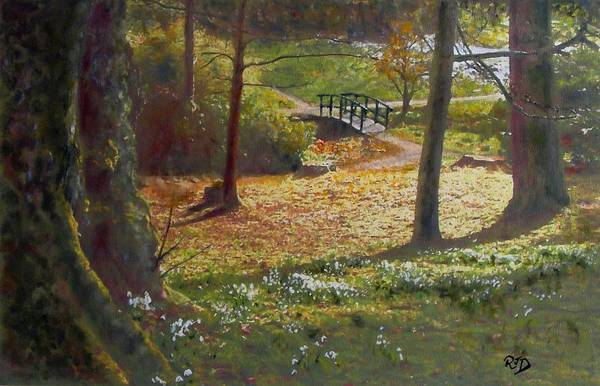 Snowdrop Painting - Spring Glow At  Kailzie Gardens Peebles by Richard James Digance
