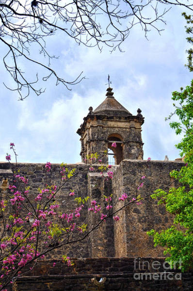 Photograph - Spring Has Arrived At The San Jose Mission In San Antonio Texas by Gerlinde Keating - Galleria GK Keating Associates Inc