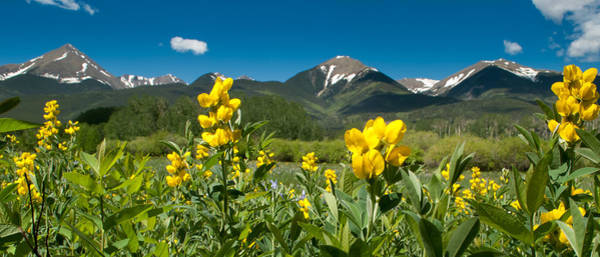 Westcliffe Photograph - Spring In The Wet Mountain Valley by Shanna Lewis