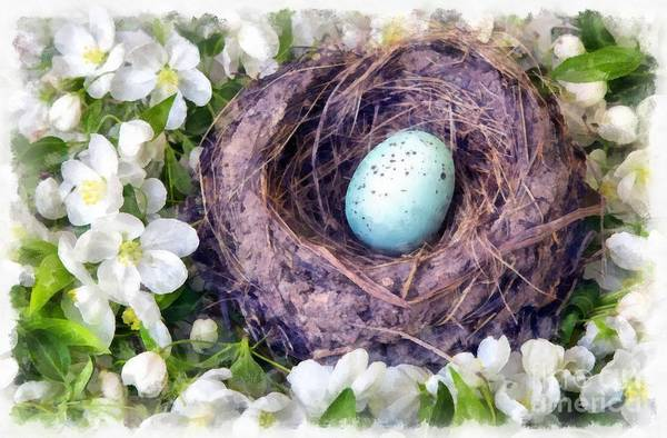 Robin Egg Blue Photograph - Spring Is Finally Here by Edward Fielding