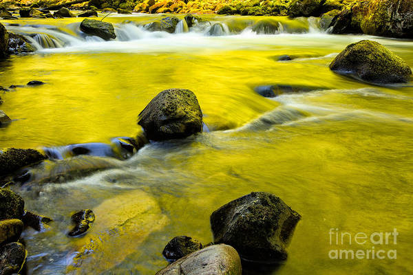 Photograph - Spring Is Here by Stuart Gordon