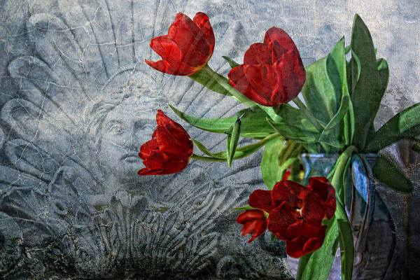 Wall Art - Photograph - Spring Messengers by Joachim G Pinkawa