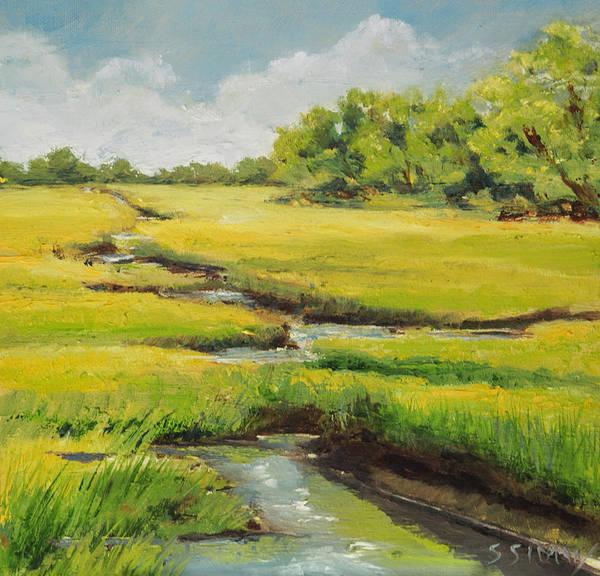 Plein Air Photograph - Spring On The Marsh by Sally Simon