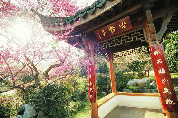 Chinese Pavilion Photograph - Spring Pavilion Hangzhou by Andy Brandl