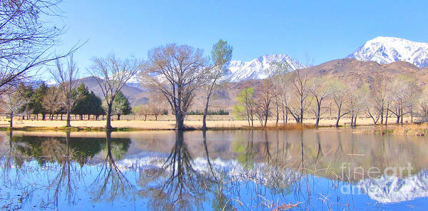 Bishop Hill Photograph - Spring Reflections by Marilyn Diaz