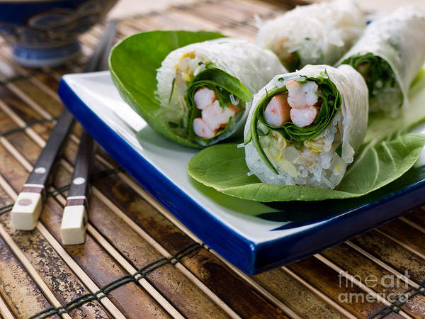 Asian Food Photograph - Spring Rolls by Edward Fielding